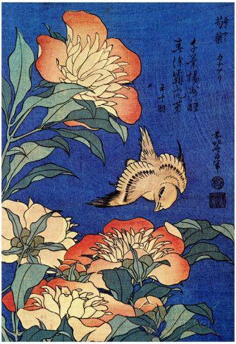 Katsushika Hokusai A Bird And Flowers Art Poster Print Posters sur AllPosters.fr