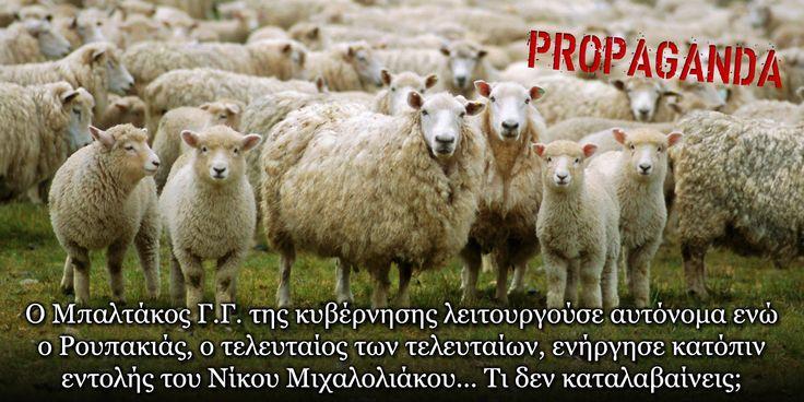 Τα Πρόβατα Ξυπνάνε - ΕΘΝΙΚΗ ΑΝΤΙΣΤΑΣΗ