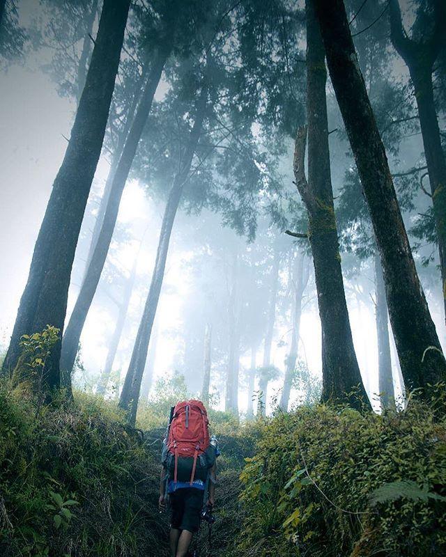 Kenapa Naik Gunung Karena Saya Sadar Klau Naik Pelaminan Butuh Pasangan Loc Akar Cinta Jalur Pendakian Gunung Pr Foto Alam Pemandangan Fotografi