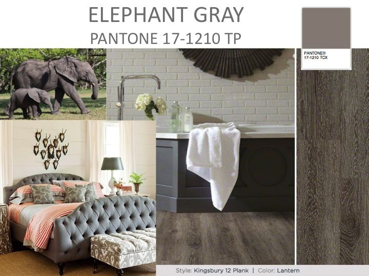 ELEPHANT GRAY If Buried Truffles Is An Alternate For Black