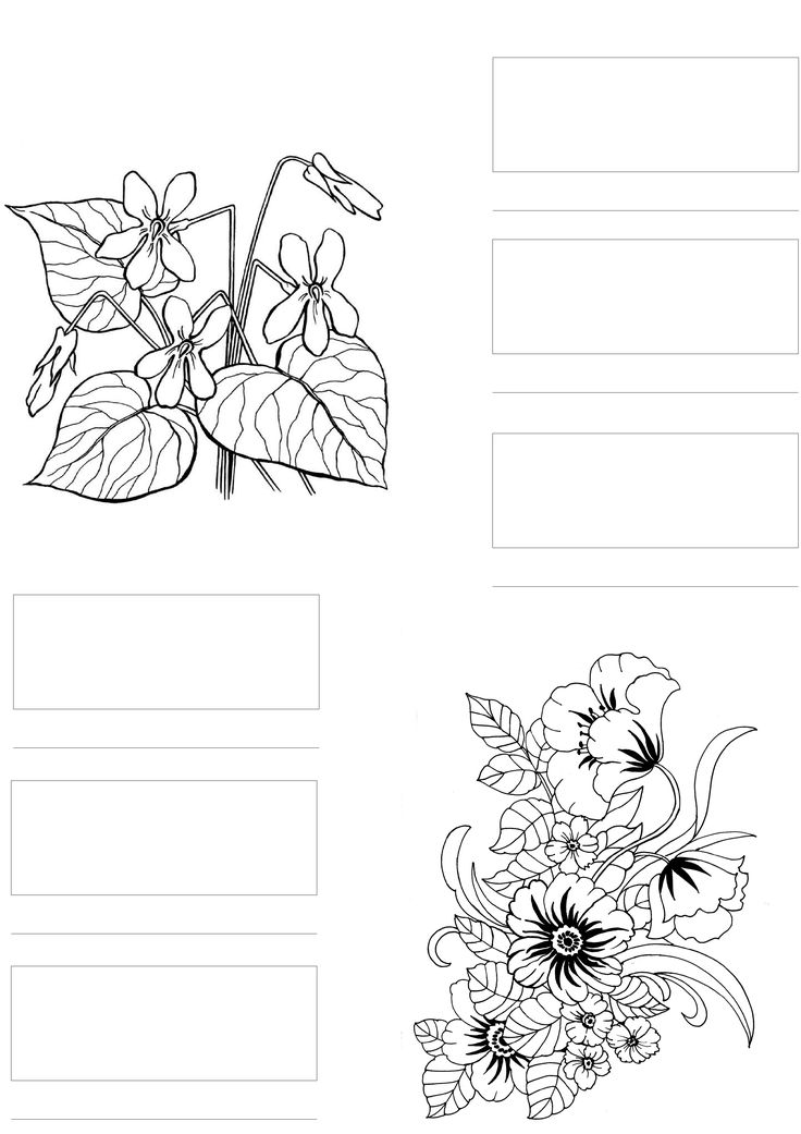 Blank Copic Marker Color Chart Sketch Coloring Page