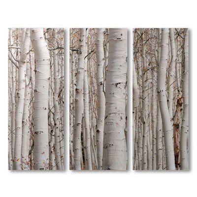 Canvas birch tree 3 panels wall art decor otc http www for Beautiful birch tree wall mural