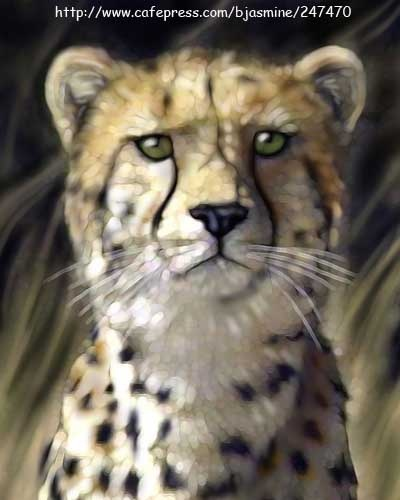 A #bigcat for #caturday ... Cheetah photo-illustration by Brandi Jasmine. http://www.cafepress.com/bjasmine/247470