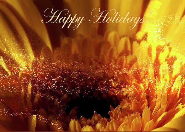Happy holidays card. 10 pack. Joy and bright happiness. #happyholidays #greetingcards