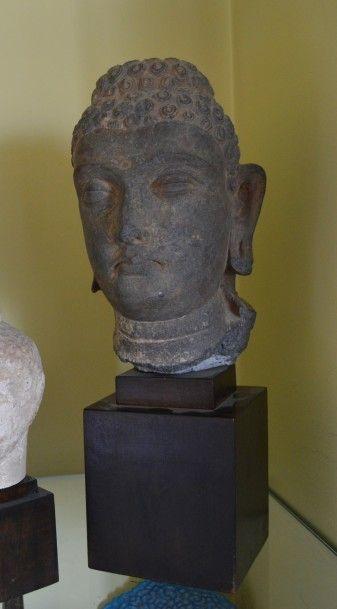Tête de Bouddha en schiste gris bleuté. Travail moderne de style Gandhara. Haut.: 19 cm.