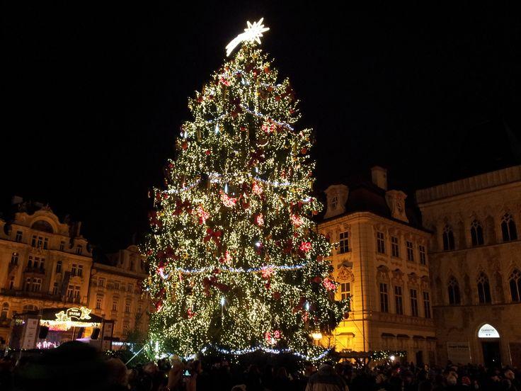 Vánoční strom na Staroměstském náměstí v Praze. Christmas tree on Old Town Square in Prague (CZ). 2014