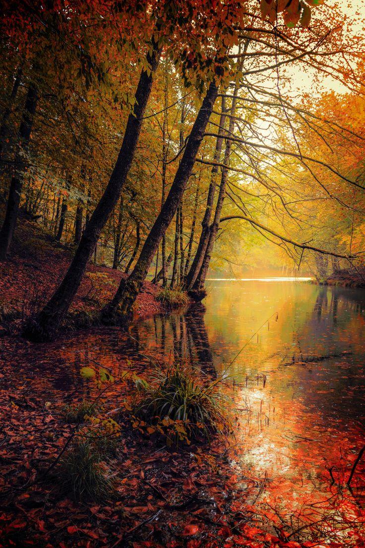 Autumn Colors by Harry Eggens ~ Yedigöller, Bolu, TR**