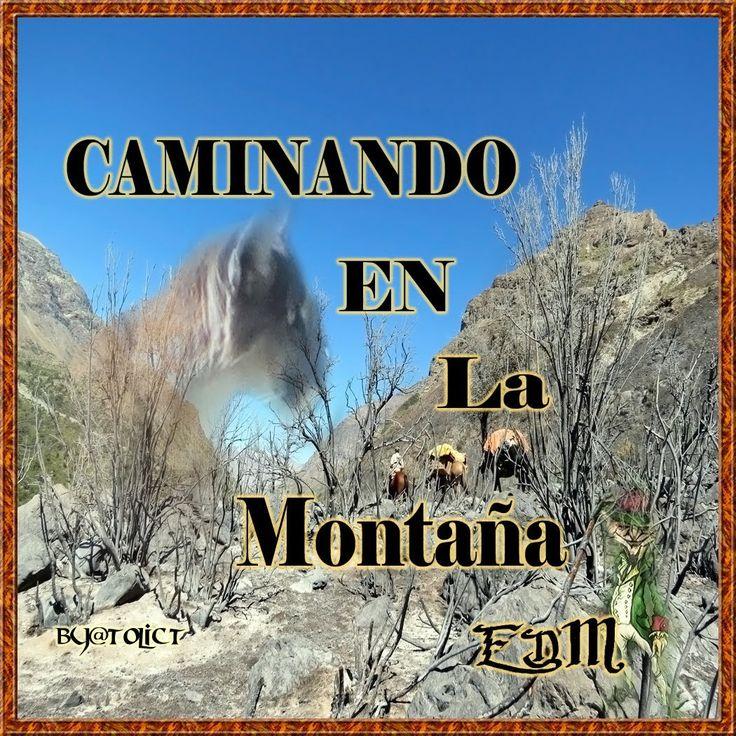 Caminando en la montañaWalking in the mountains link:tema:https://soundcloud.com/tolict-ilicchix/caminando-en-la-monta-a