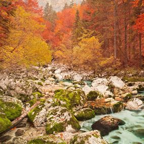 Surrender to the fascination of the Alps in Slovenia's Triglav national park.  Visit Europe - Google+