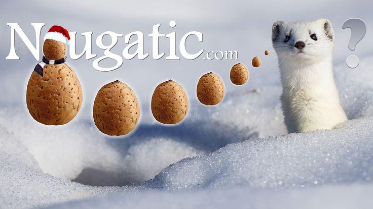 ¿Dónde están mis dulces para este invierno? Por supuesto.. En Nougatic.com ! ;) FELICES FIESTAS!
