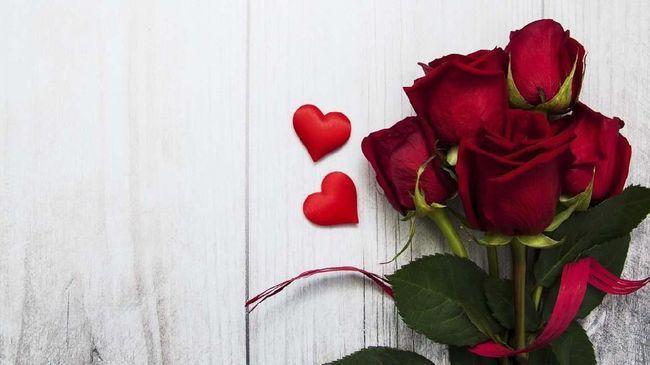 Pin Oleh Sri Handayani Di Mawar Merah Di 2021 Gambar Bunga Bunga Cantik Gambar Profil