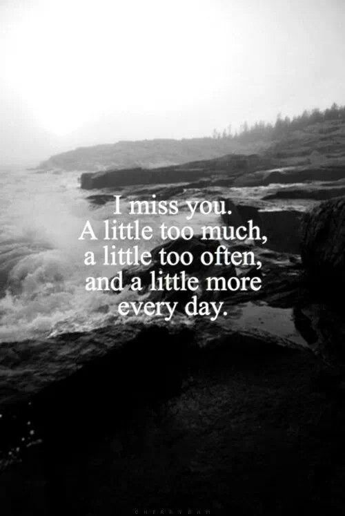 If you only knew how much I missed you. There will always be a piece of my heart missing.