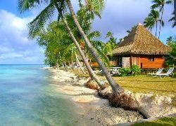 Plaża, Domki, Palmy, Morze, Atol, Polinezja, Francuska