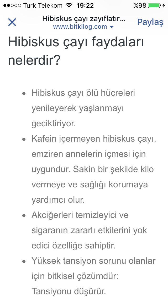 Hibiskus 3