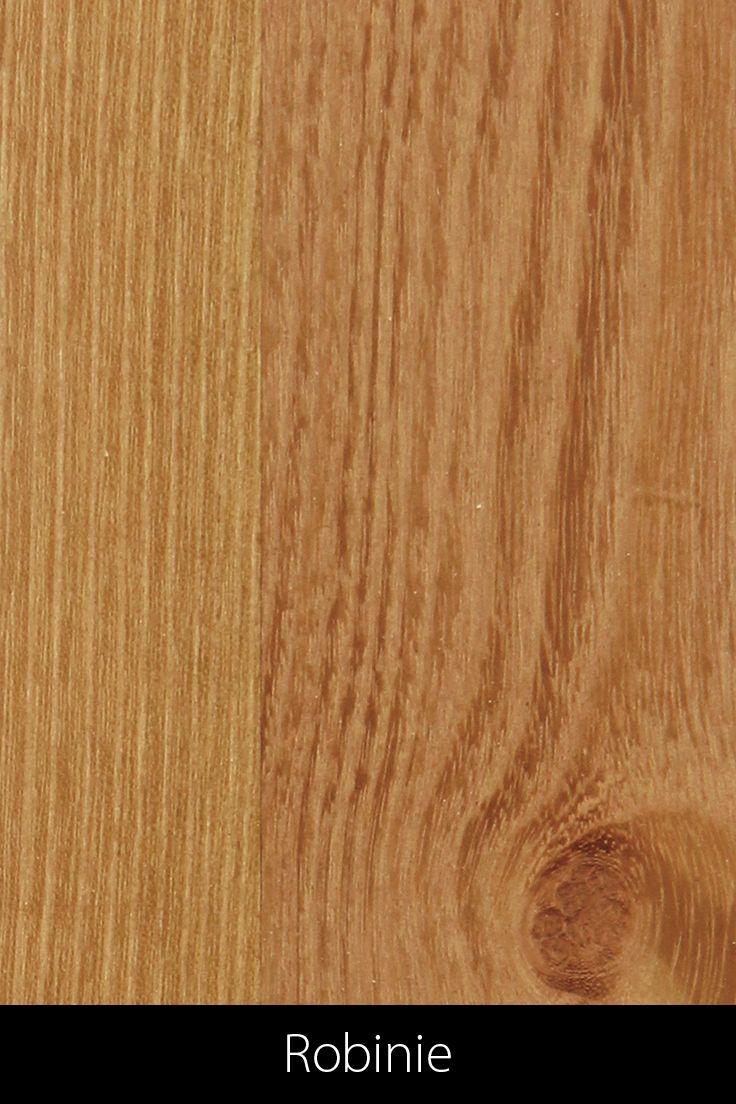 Robinie Robinie Eiche Holz Holz