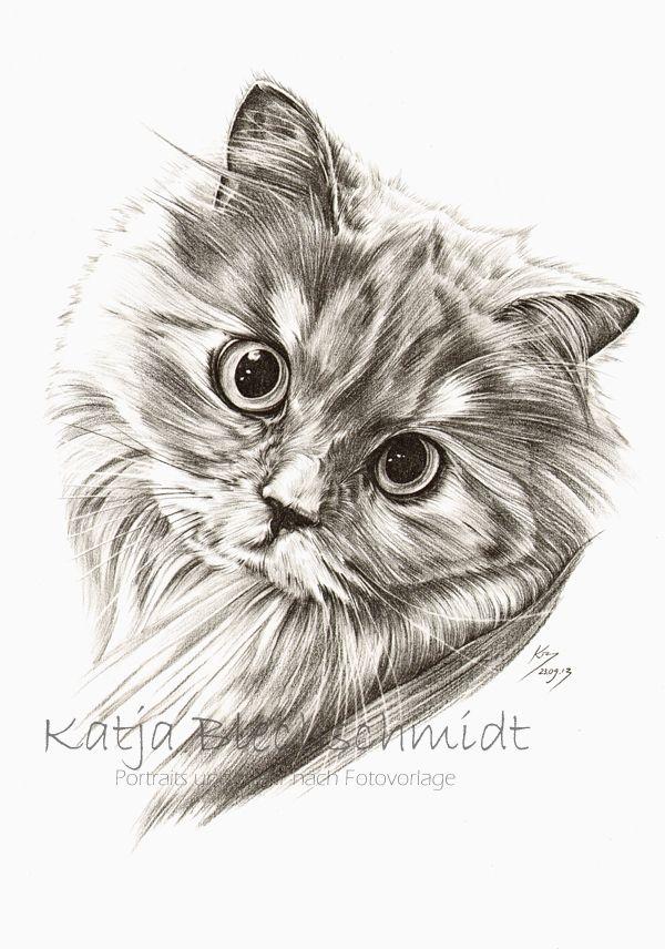Katzenportrait - A3 https://www.facebook.com/Portraits.und.mehr.nach.Fotovorlage