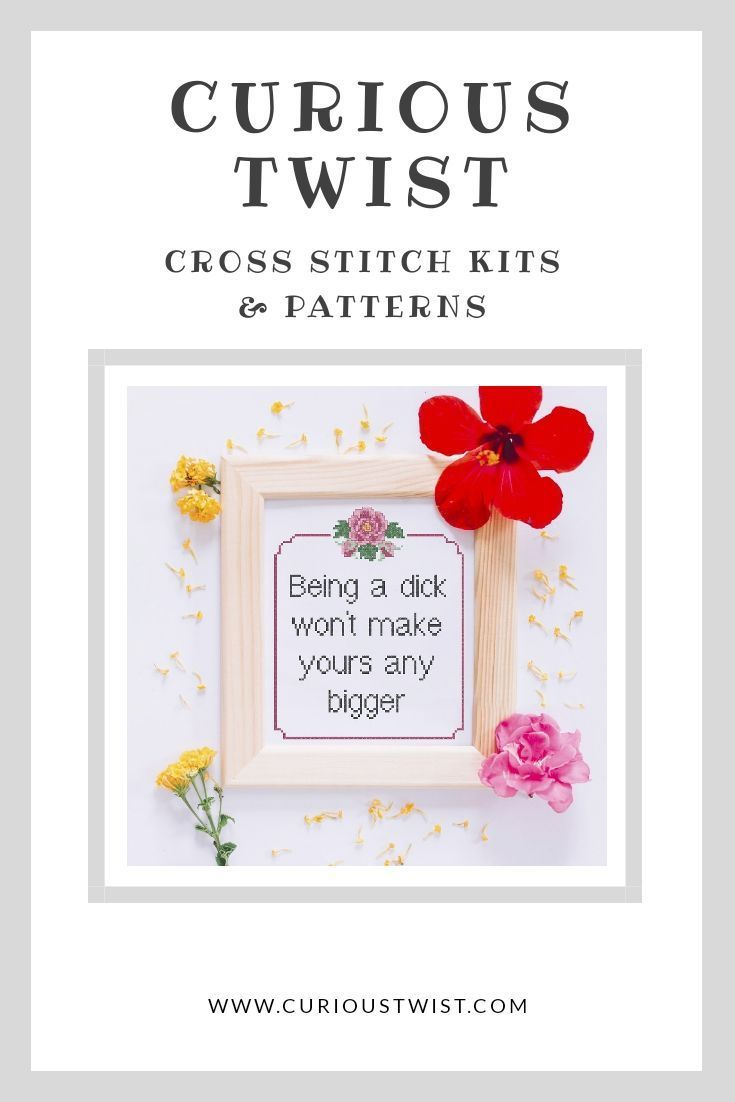 Funny Cross Stitch PATTERN Quote Sarcastic Cross Stitch PATTERN