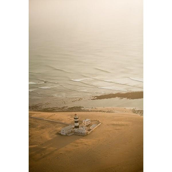 Dori Moreno Photography - Standing Guard