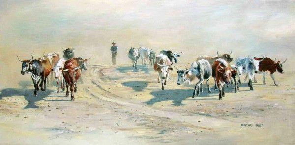 Nguni Herd Returning Home.