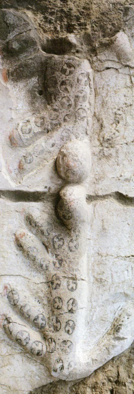 Çatalhöyük, Leopar Tapınağı VI.B.44, James Mellaart (Erdinç Bakla archive)
