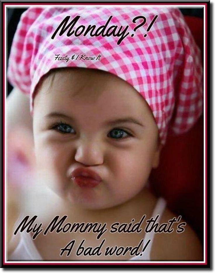 ..Happy Monday! ツ ♥༺ß༻   Good morning funny, Good day ...