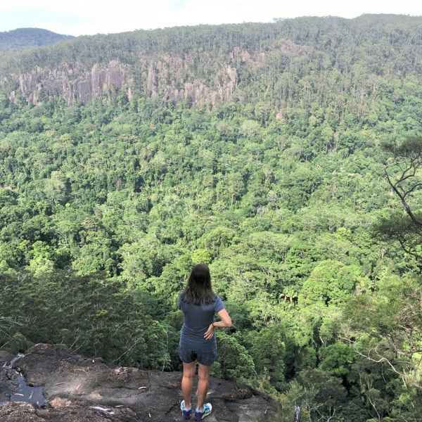 Goonengerry National Park is a bit of a hidden treasure. It has only been a national park since 1999. Before that it was state forest. As an escape from the busyness and heat of Byron during the summer it can be ideal.  Things to do in Byron Bay - Byron Trails