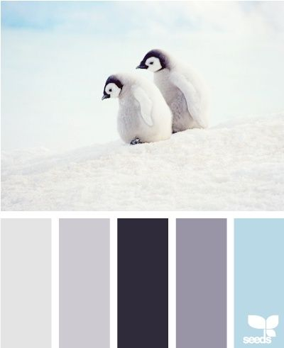 color ideas for baby boy nursery