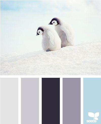 color ideas for baby boy nursery