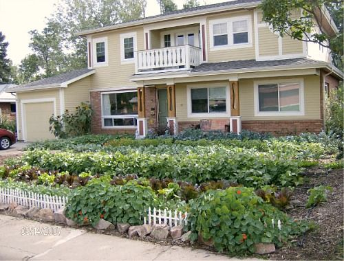 front yard veggie gardens to me a vegetable garden is a true sign of