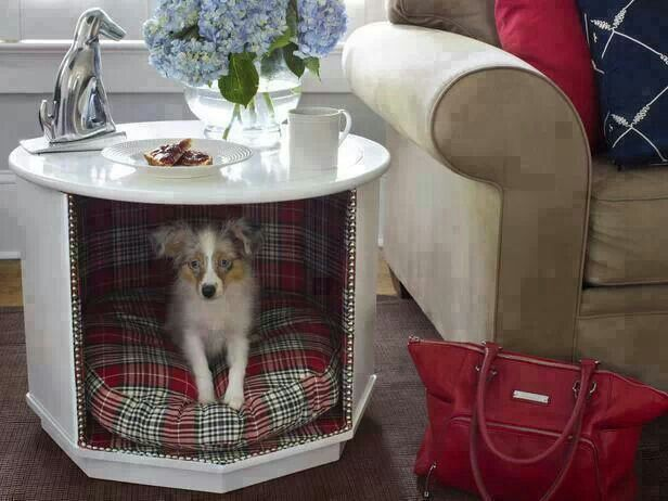 Dog bed! This is a great idea for those ugly round end tables. This makes them cute and functional!