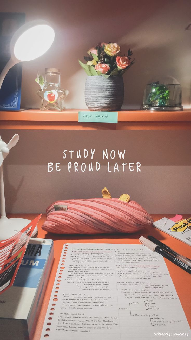 Hallo folge mir auf instagram / twitter: @ dwioin24 #study #studygram #studyblr #studygramindonesia #indonesia #soshum #cute #studyspace