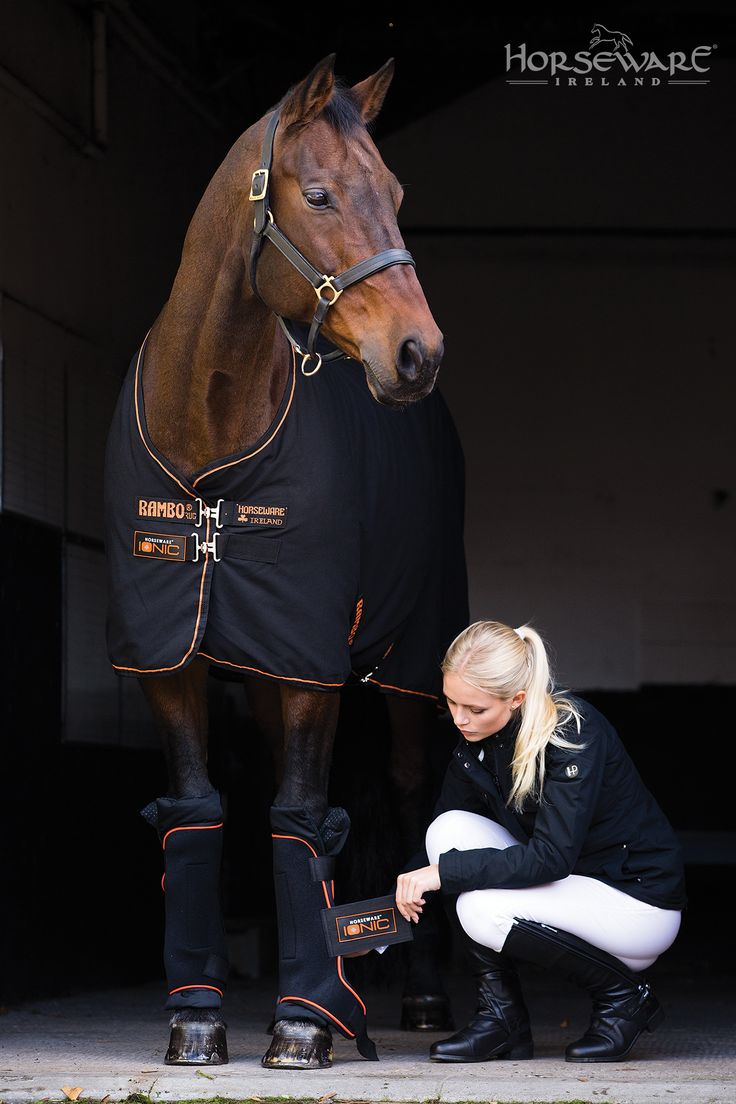 The Rambo Ionic  Stable Sheet and Boots from Horseware for S/S15. Visit www.horseware.com to find your nearest stockist.