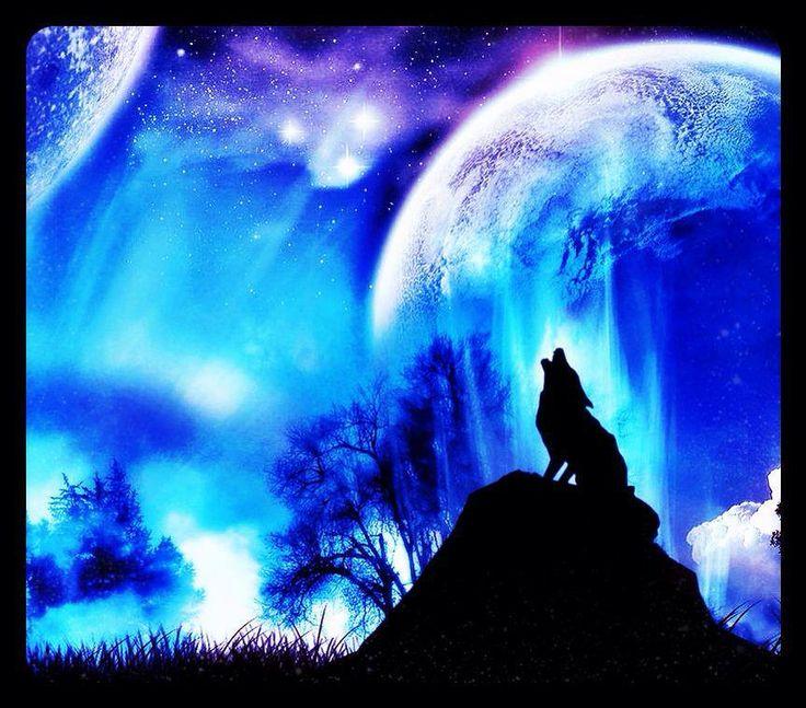 blue moon wolf wallpaper - photo #18