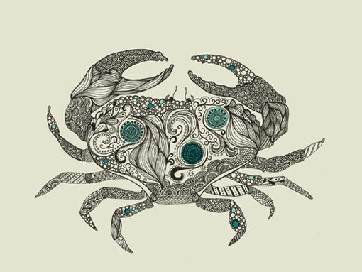 Sea Creatures    Take a look at Rachel Wilson's beautiful sea creature illustrations, some of which were created for a collaboration with Brainstorm. I'm loving all the details and patterns that make up each creature. Take a closer look here and here.