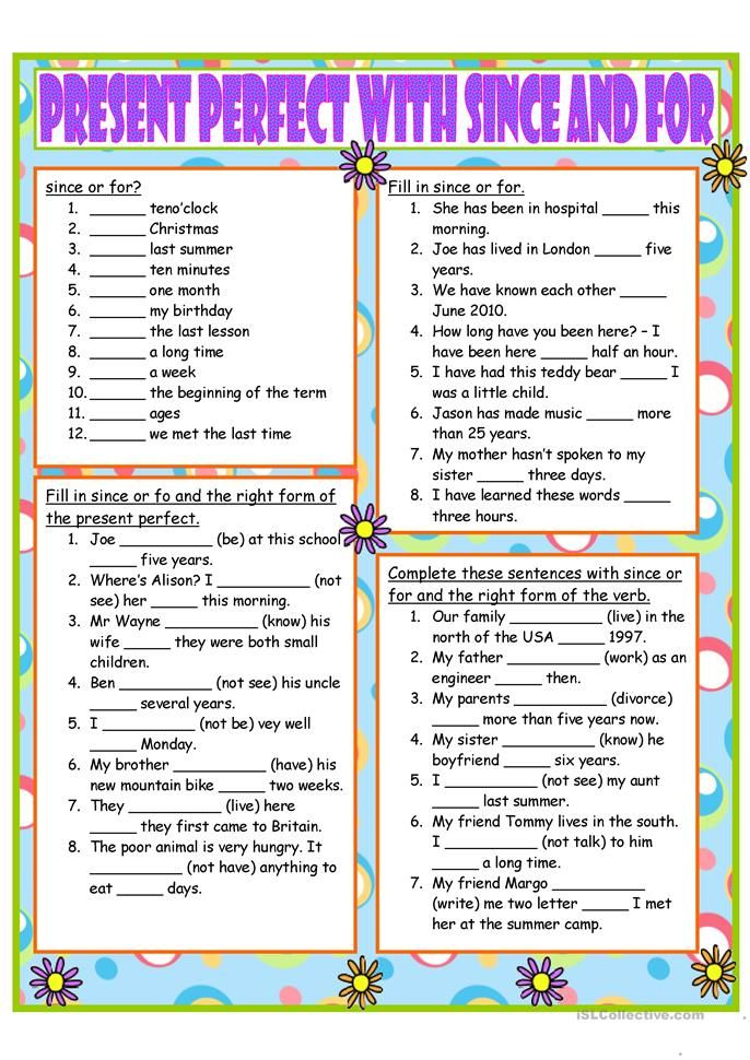 Present Perfect with since and for (With images) Освіта
