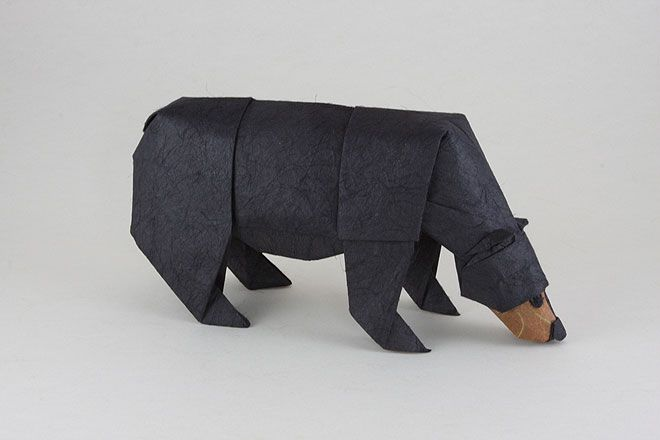 south african origami artist quentin trollip