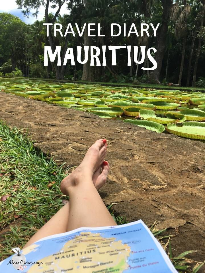 Travelling around Mauriitius solo. My diary with usefull tips and what I ate as a vegan there. #travel #mauritius #vegan #diary #travelblogger