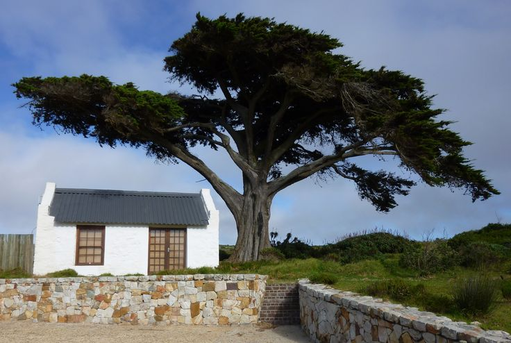 Cape Point, South Africa. http://www.magiccoach.com