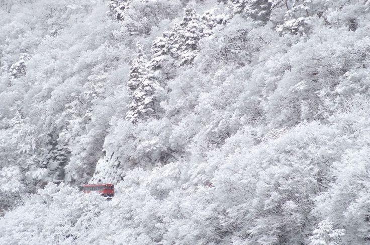 いいね!185件、コメント4件 ― 会津鉄道株式会社さん(@aizu_railway)のInstagramアカウント: 「福島県にある会津鉄道のInstagramです。 会津線の過去の雪写真をご紹介しています。今年の冬は是非、雪景色を見に会津へお越しください。 #会津鉄道 #会津線 #会津鉄道の冬 #会津鉄道の四季…」