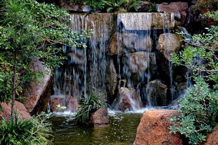17 best florida images on pinterest florida springs for Formal japanese garden