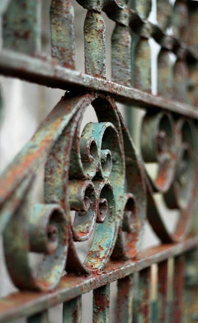 Early American Gardens: Garden Inspiration - Old, rusty wrought iron fences