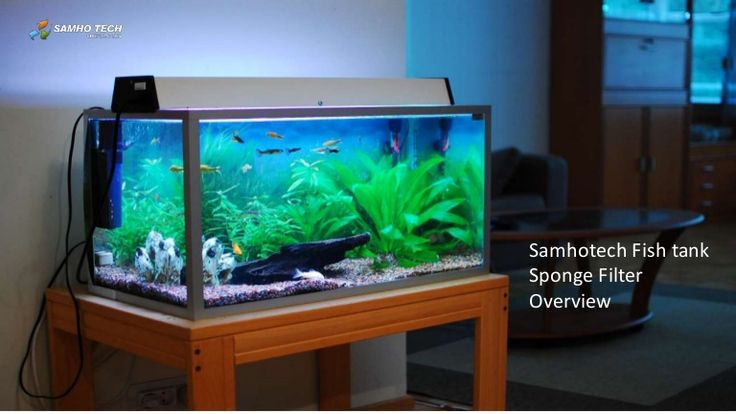 SamhoTech - Top rated Fish Tank Manufacture in Korea for supplying Aquarium fish tank products. Contact us and buy fish tank products only from us.