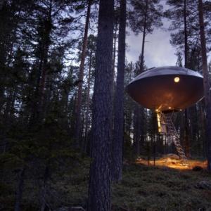 Dormire sugli alberi in Svezia, il Tree Hotel di Harads