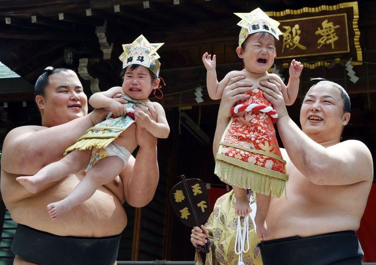 Sumoringer halten in Tokio weinende Babys in die Höhe. Rund hundert Kleinkinder unter einem Jahr nahmen an dem Baby-Schrei-Sumo-Wettbewerb teil. Ein schreiendes Kind, sagt ein japanisches Sprichwort, wächst schneller. Soll heißen: Je lauter der Brüller, desto besser die Zukunftsaussichten.