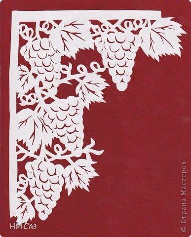 Виноград фото 7