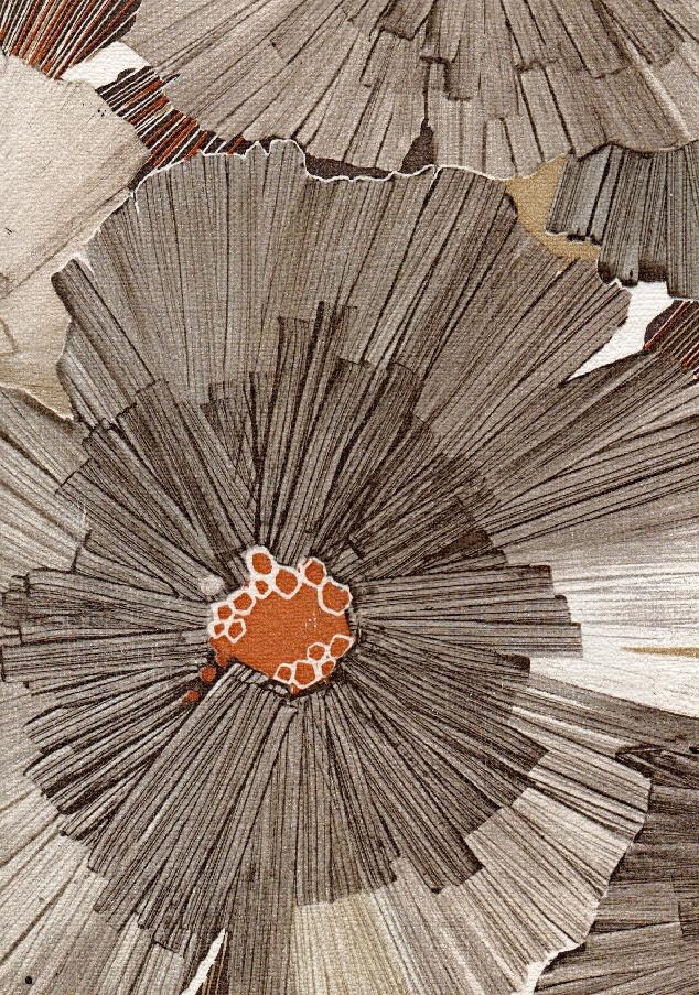 866 Best Rugs Images On Pinterest Rugs Carpet Design