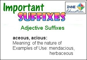 A daily Literary & Language Arts activity to help your children or students to learn their Suffixes.