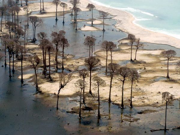 Origen: Consejos de seguridad contra los Tsunamis — National Geographic