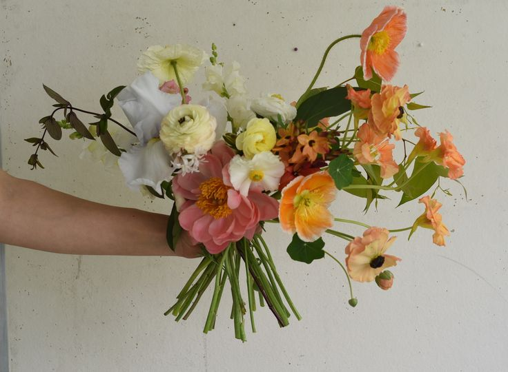 work in progress, october flowers, bridal bouquet, spring flowers, coral peony, poppies, ranunculus, nasturtium, bearded iris, sherbet tones, orange, creamy yellow, white, ivory, spring wedding