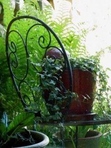 The Gardener's Eden.  An incredible online gardener's journal with beautiful photos.